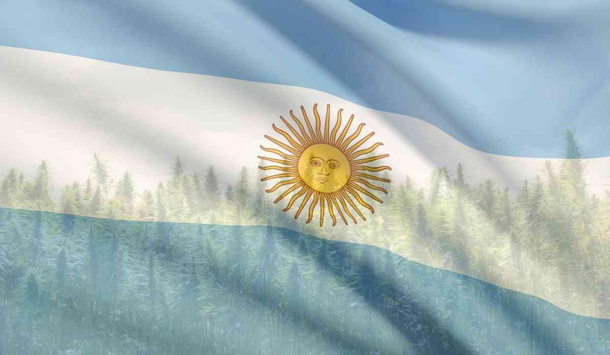 מדקליזציה בארגנטינה
